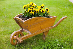 Brown barrow with yellow flowers. In green grass background Royalty Free Stock Photo