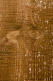 Brown barwił drewnianego panelu dla tła Fotografia Stock