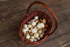 The brown basket with champignons on a wooden background, top view. Royalty Free Stock Image