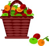 Brown basket with fruits on a white Stock Image