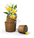 Brown baskets with spring flowers. On the white Stock Images