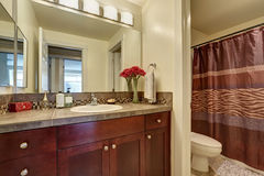 Brown bathroom interior with a toilet, shower and vanity Royalty Free Stock Image