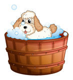 A brown bathtub with a dog taking a bath Stock Image