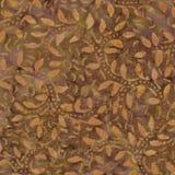 Brown  Batik Pattern Stock Image