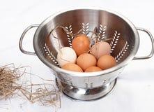 Brown-Bauernhof-Eier im Colander stockfotografie