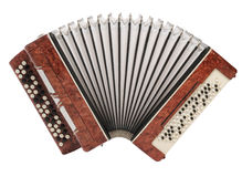 Brown bayan (accordion) isolated Royalty Free Stock Photo