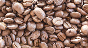 Brown bean coffee. The small abstract brown coffee beans Royalty Free Stock Images