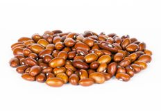 Brown beans Stock Images