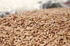 Brown beans in a big grocery Stock Images