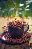 Brown beans pouring coffee cup Stock Image