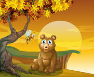 A brown bear and a bee near the cliff Stock Image