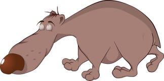 Brown bear. Cartoon Royalty Free Stock Images