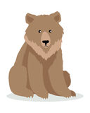 Brown Bear Cartoon illustration in Flat Design Royalty Free Stock Photography