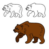 Brown bear (contours) Stock Photo