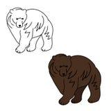 Brown bear 1 (contours) Royalty Free Stock Photo