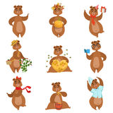 Brown Bear Different Activities Set Of Girly Character Stickers Royalty Free Stock Image