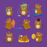 Brown Bear Different Emotions Set Royalty Free Stock Image