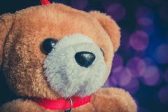 Brown bear doll with bokeh background. Stock Image