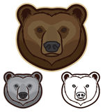 Brown Bear Face. Illustration of a brown bear faces in color, grayscale and black and white Royalty Free Stock Image