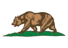 Brown bear on grass. Vector Format Available AI vector illustration