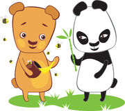 Brown bear and panda Royalty Free Stock Image