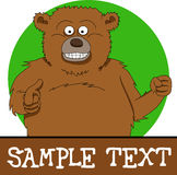 Brown bear with place for text Royalty Free Stock Photos