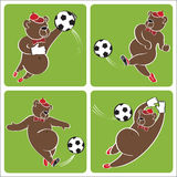 Brown bear plays football.Cartoon  humorous illustration s Stock Image