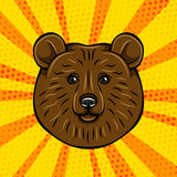 Brown bear portrait wild animal. Vector illustration  on comic Royalty Free Stock Images