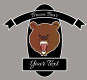 Brown bear. Predator fauna wild Royalty Free Stock Photo