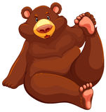 Brown bear sitting down Royalty Free Stock Photos