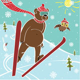 Brown bear ski jumping. Humorous illustration Royalty Free Stock Image