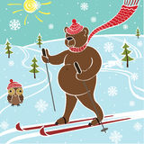 Brown bear skiing in nature.Humorous illustration Stock Photo