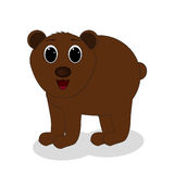 Brown bear. Standing on a white background Stock Images