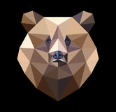 Brown bear in the style of the polygon. Fashion illustration of. The trend in style on a black background Royalty Free Stock Photography