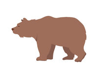 Brown Bear Vector Illustration in Flat Design Stock Images