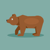 Brown bear. Vector Illustration Royalty Free Stock Images
