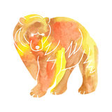 Brown bear watercolor stock photos