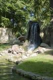 Brown bear at waterfalls. Image of the brown bear at waterfalls Royalty Free Stock Photo