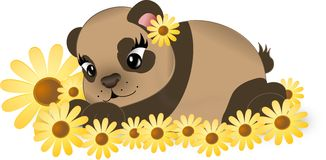 Brown bear with yellow flowers Royalty Free Stock Images