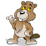 Brown Beaver. Cartoon Illustration, Vector Royalty Free Stock Photos
