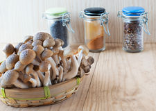 Brown beech, Buna shimeji mushrooms. Stock Photography