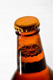 Brown beer bottle Royalty Free Stock Images
