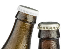 Brown Beer bottles isolated Royalty Free Stock Image