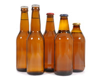 Group of brown beer bottles in a row isolated on white background Royalty Free Stock Images
