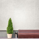 Brown bench, metal trash bin and thuja near the wall Stock Images