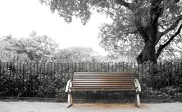 Brown bench with nobody in the park Royalty Free Stock Photography