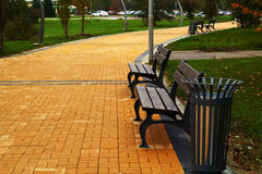 Brown benches in the park Royalty Free Stock Image