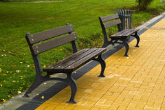 Brown benches in the park Royalty Free Stock Images