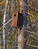 Brown bird house tree woods Stock Photos