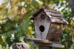 Brown bird house on a tree Stock Photo